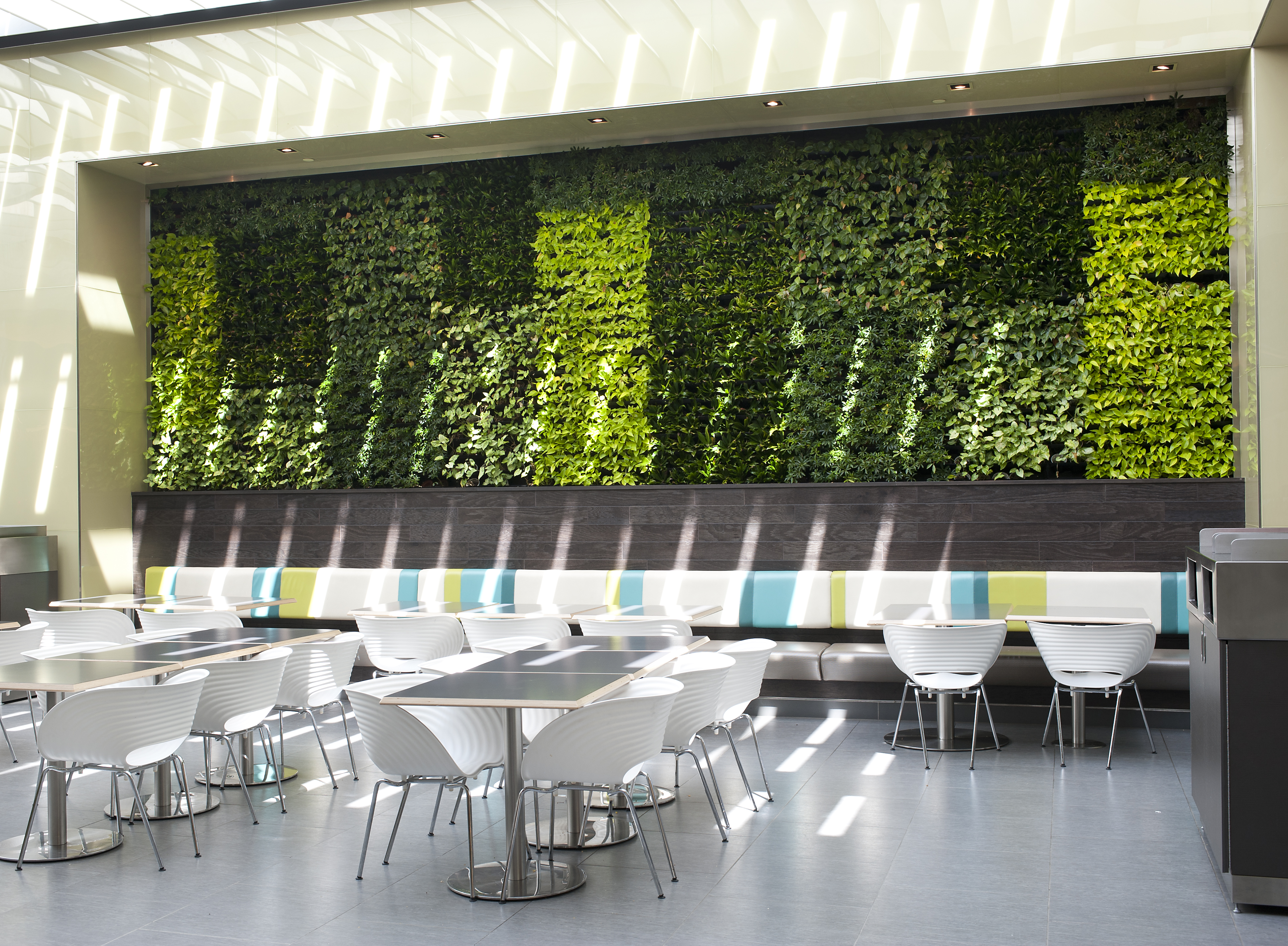 Living Green Wall in Patio Cafes_Phase 1 - Mitzi ... on Green Wall Patio id=50790